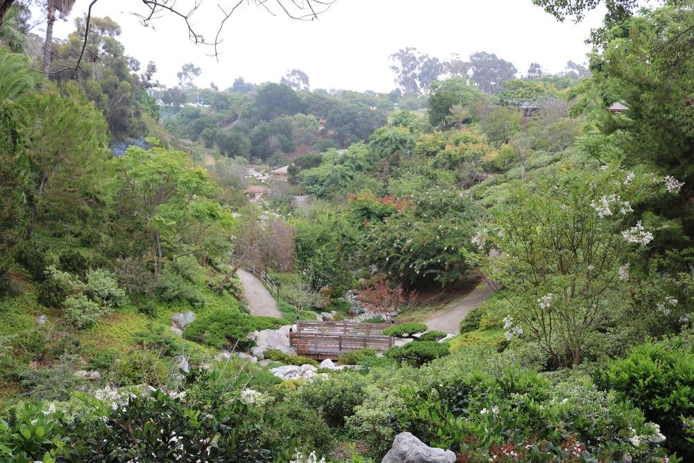 japanese-garden-balboa-park-overview