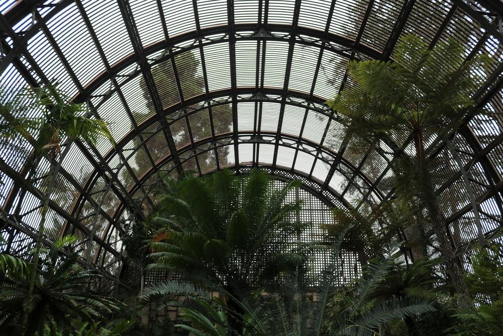 balboa-park-arbor-garden