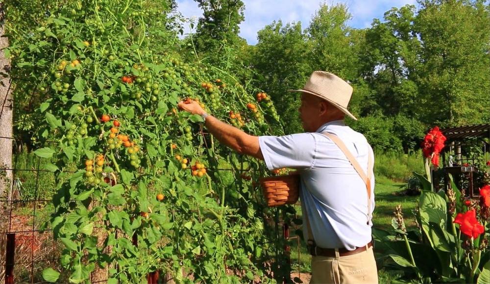 garden-savings-plan-farmer-fred