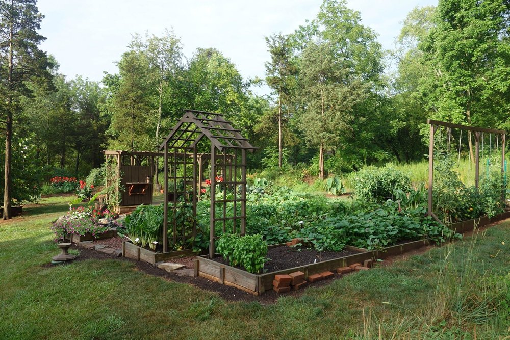 A photo of my backyard garden - featuring several of my raised garden beds!