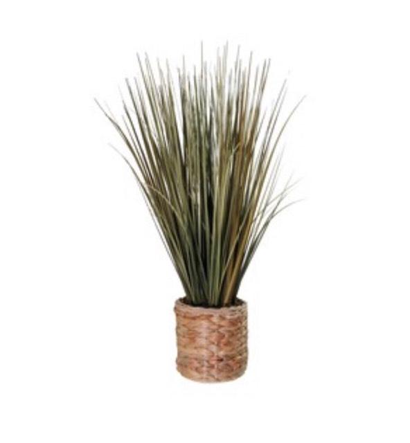 Seagrass Planter