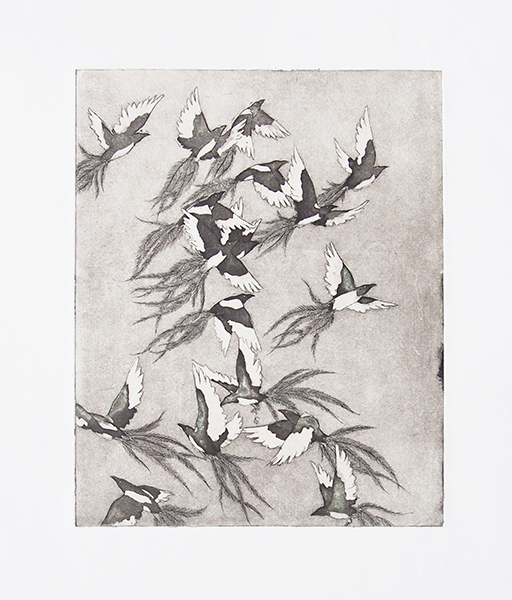 Magpies in Flight   etching on paper  2014