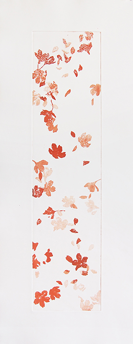 Sakura in Vermillion   etching on paper  2014