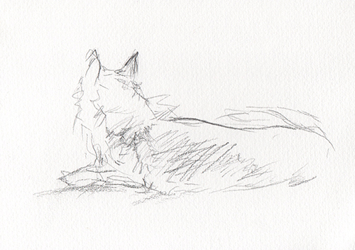 Kitsune 1   graphite on paper  2015