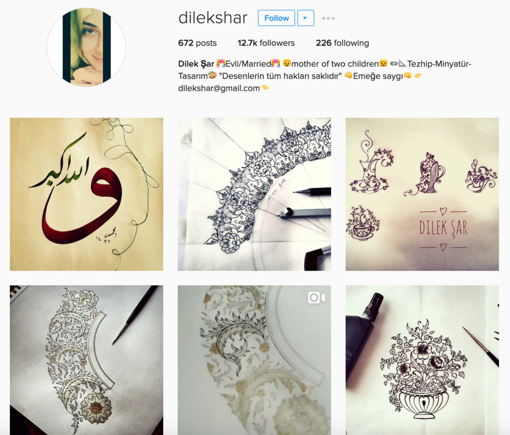 https://www.instagram.com/dilekshar/