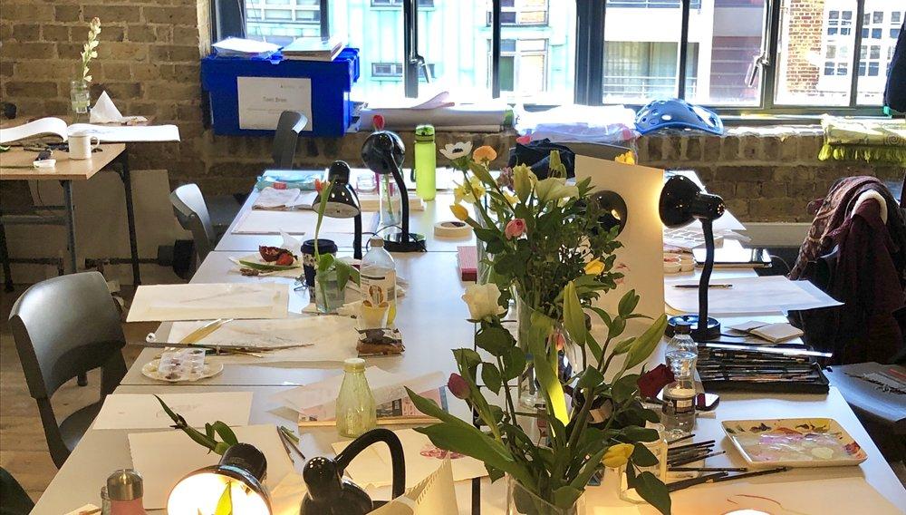 Where to study short botany classes and botanical illustration classes?