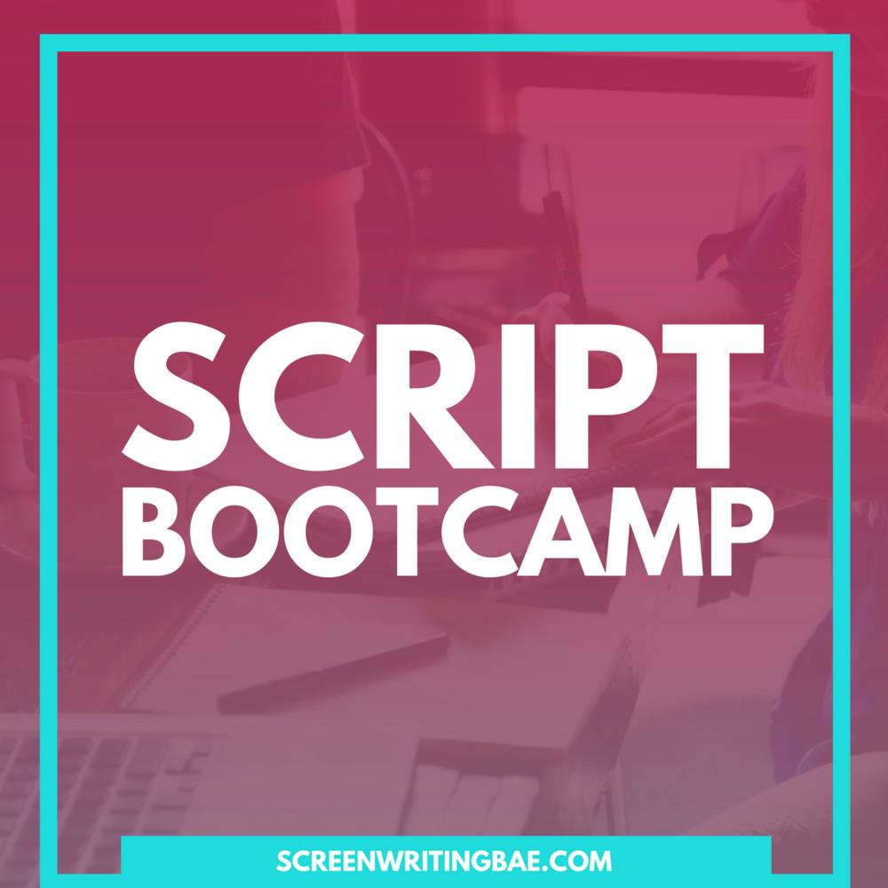 scriptbootcamp.jpg
