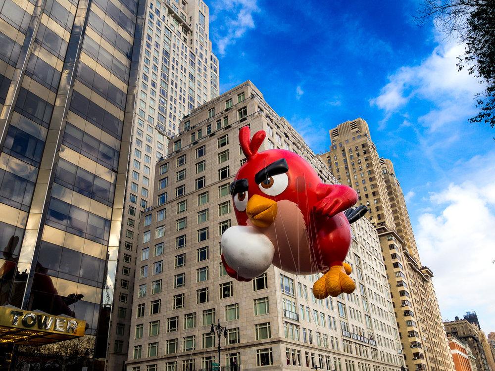 Angry Bird - parade.jpg