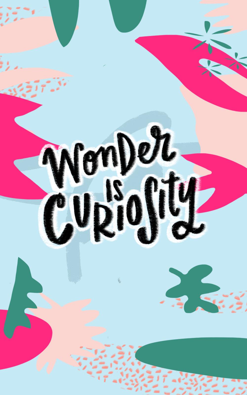 WonderIsCuriosity.jpg