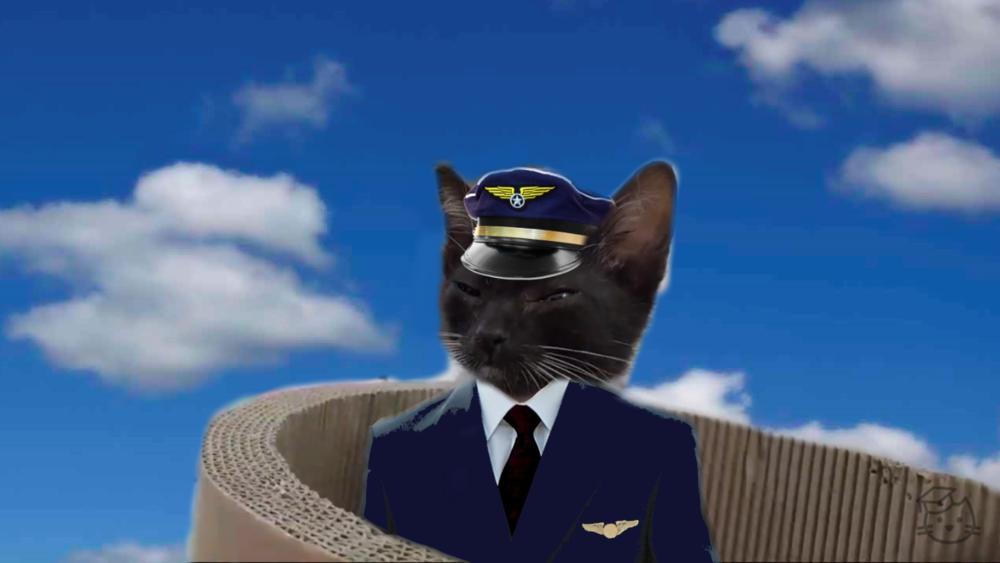 Contemplation Air - Captain Kazoo