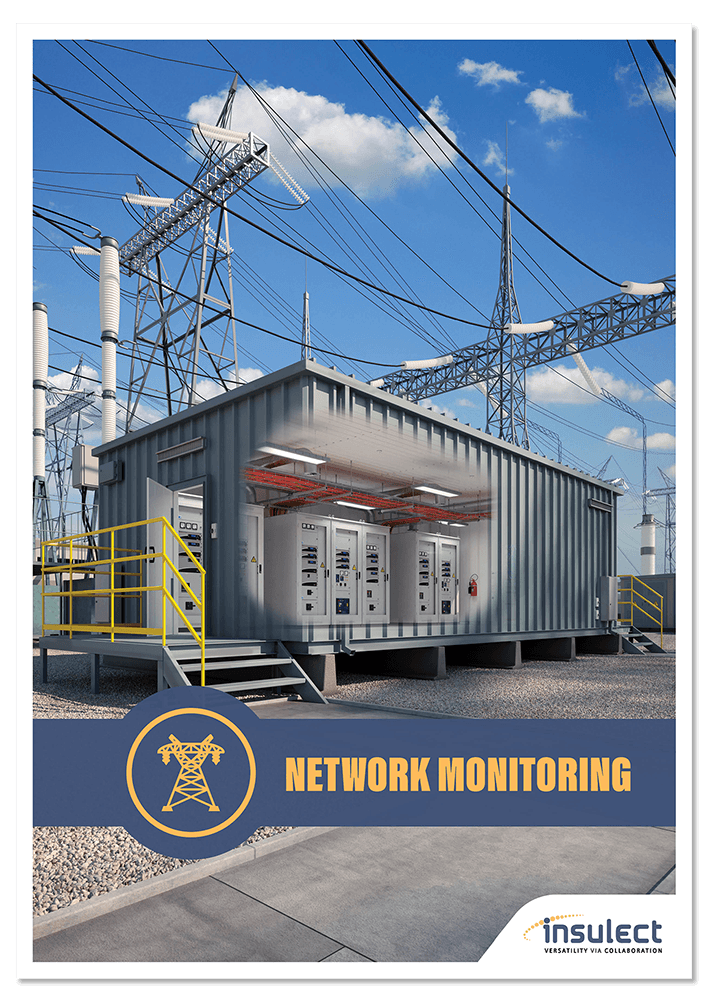 Insulect Network Monitoring Brochure Thumbnail.png