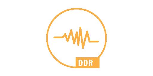 DYNAMIC DISTURBANCE RECORDING - DDR