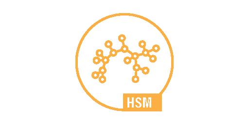 HIGH SPEEDMONITORING - HSM