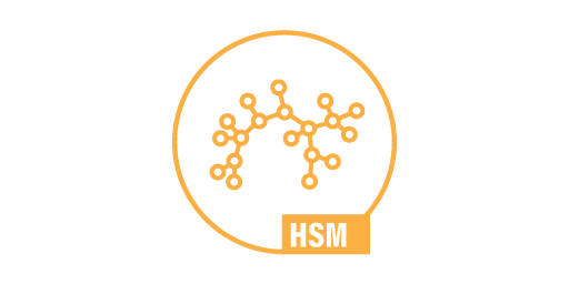 HIGH SPEEDMONITORING - HSM