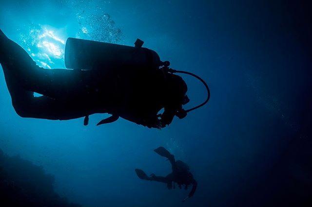 #silhouettes #diving #redsea #sonya7sii #ikelite #egypt