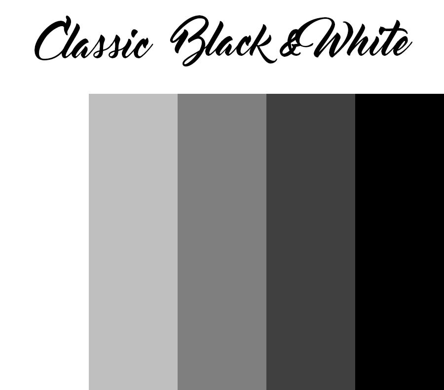 Classic Black and white photoshoot