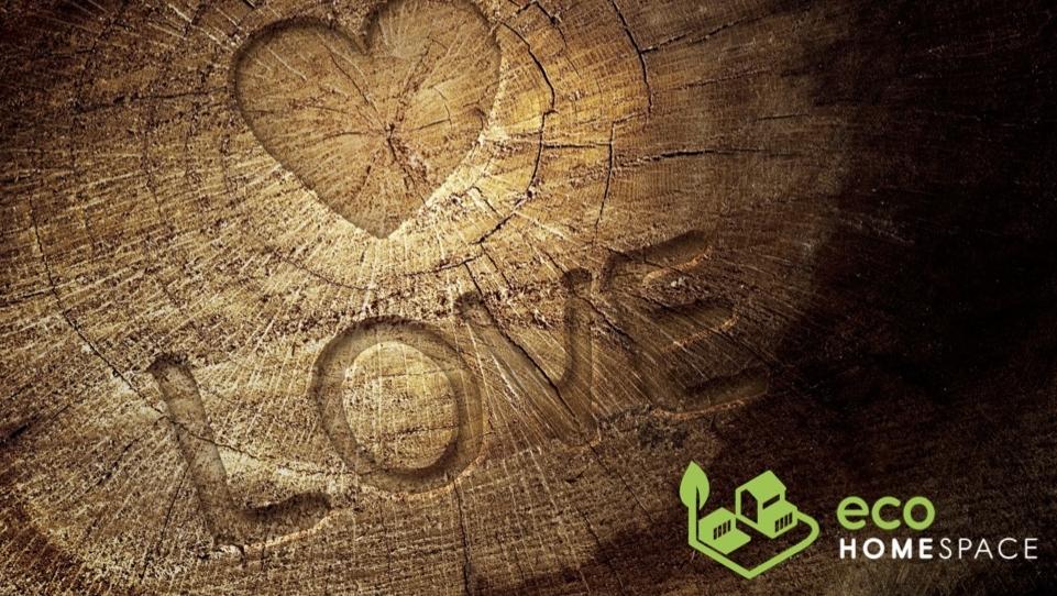 love timber.jpg