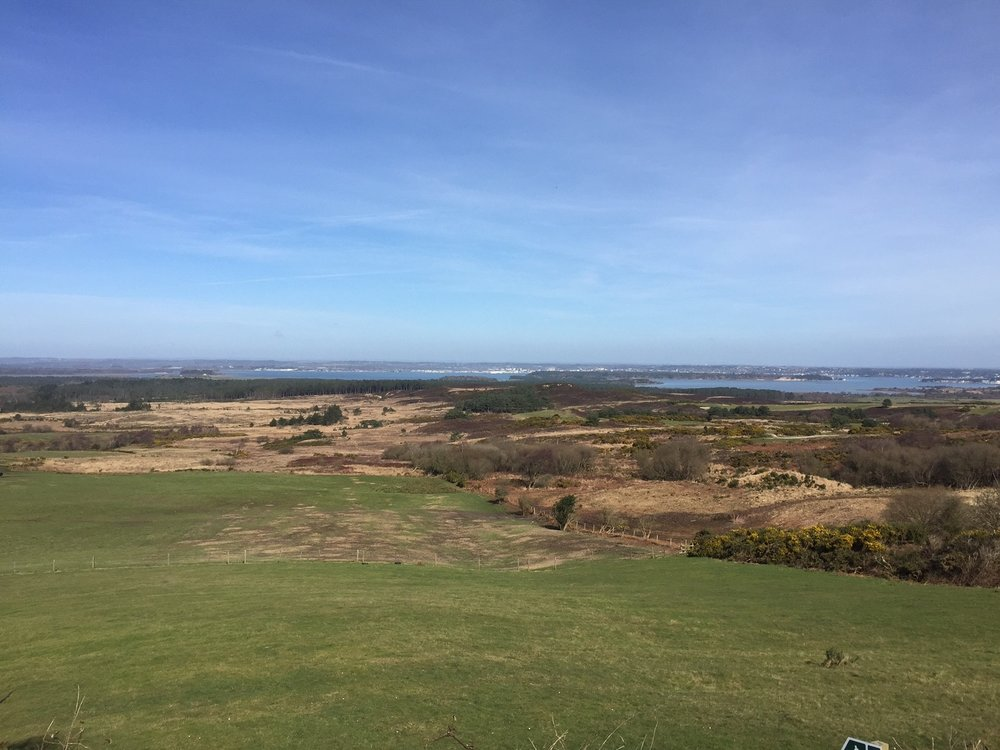 Great view overlooking Poole Harbour and Studland Heath a.k.a mountain biking heaven!