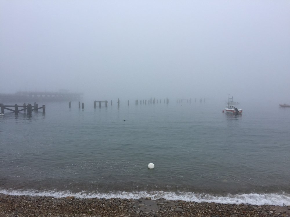 Returning back home to Swanage thick fog greeted me - no sailing :(