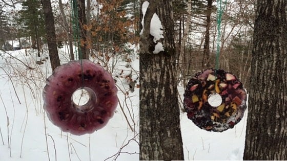 The finished wreath (front and back views) hanging up for the critters to enjoy