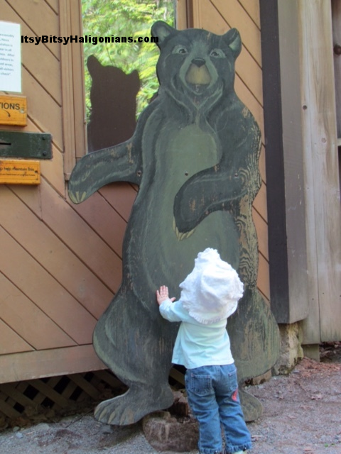 Make sure you get your photo with this friendly bear before you leave!