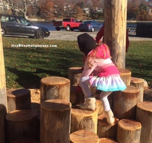 Stump steps to encourage climbing and balance.