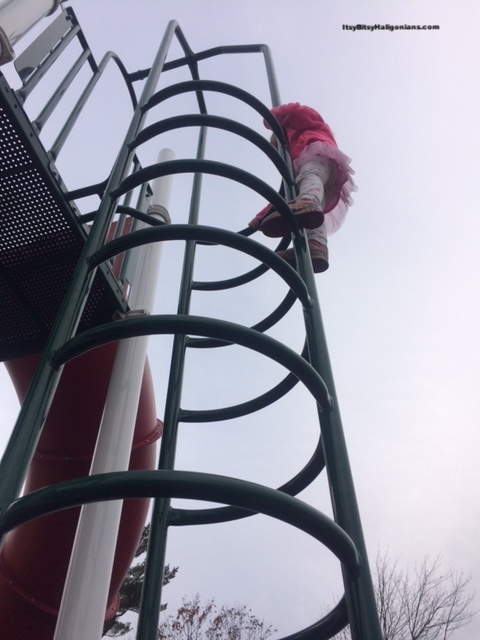 And, yes, that's my daughter, in a tutu, climbing a giant structure.