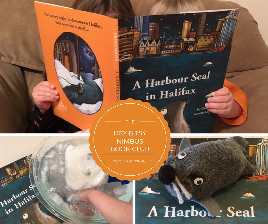 harbour seal title.png