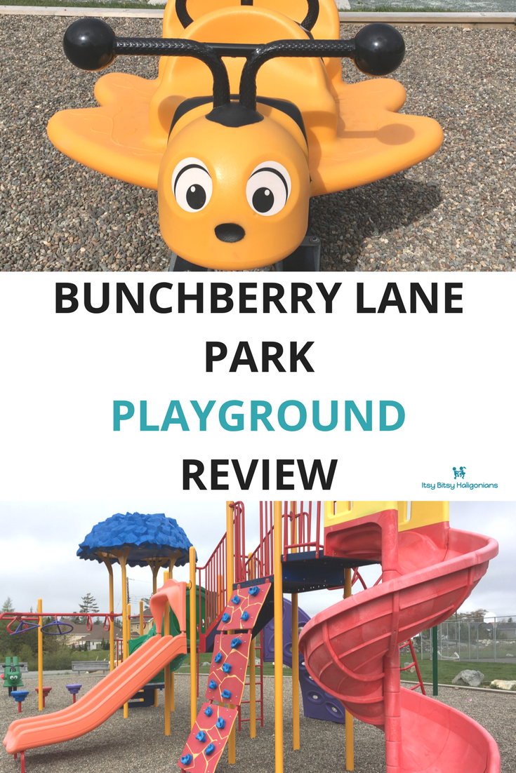 Bunchberry Lane Park in Waverley, NS Playground Review