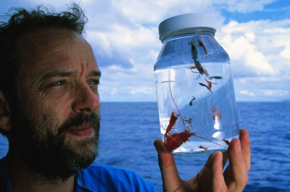 Ocean Health - Dr. Greg Stone, for Harvard International ReviewApril 14, 2013
