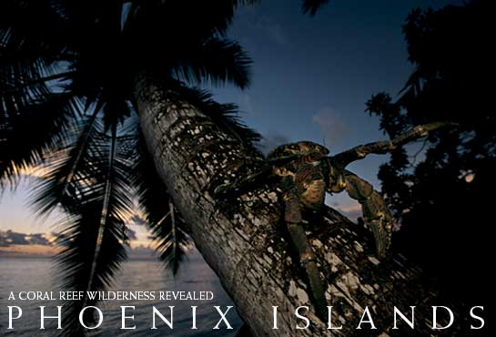 Phoenix Islands: South Pacific Hideaway - Dr. Greg Stone, for National Geographic2004