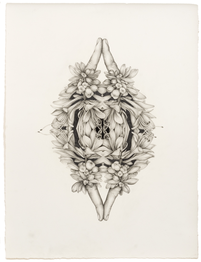 """Untitled (Rorschach Flowers 2)"", pencil, colored pencil on paper, 18"" x 13.5"", 2014"