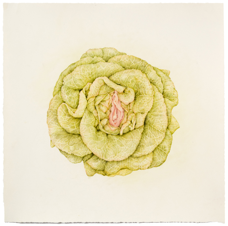 """Untitled (Lettuce Vag) colored pencil on paper, 17"" x 17"", 2013"