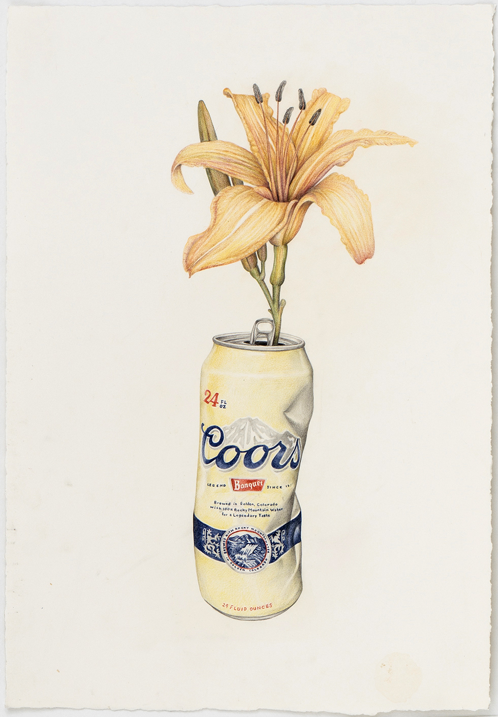 Aurel Schmidt Coors Lilly