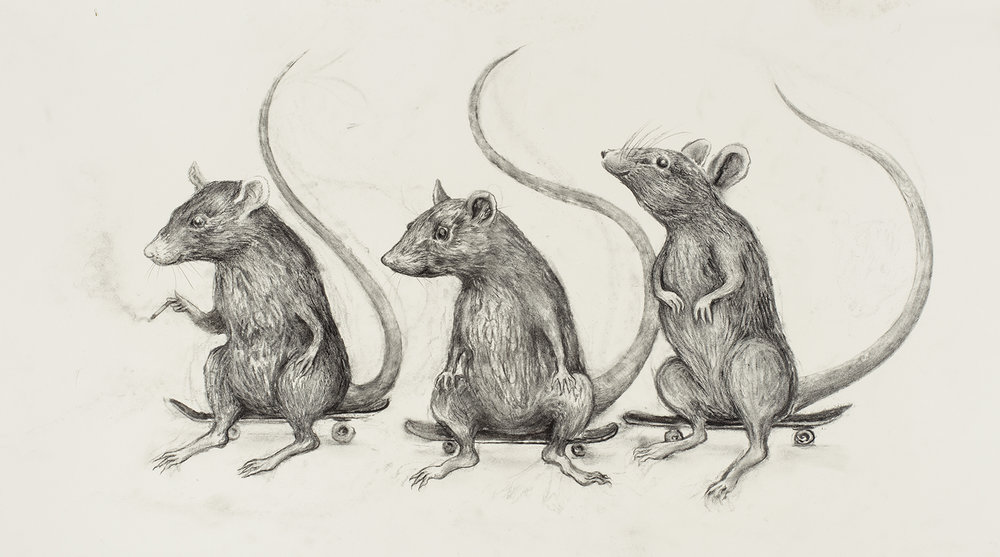 aurel_schmidt_ppow_skate_rats.jpg