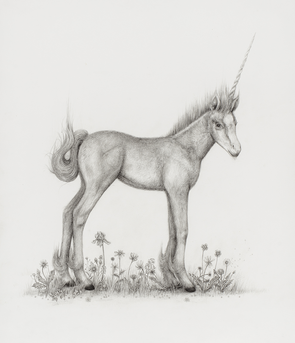 aurel_schmidt_ppow_unicorn_crop.jpg