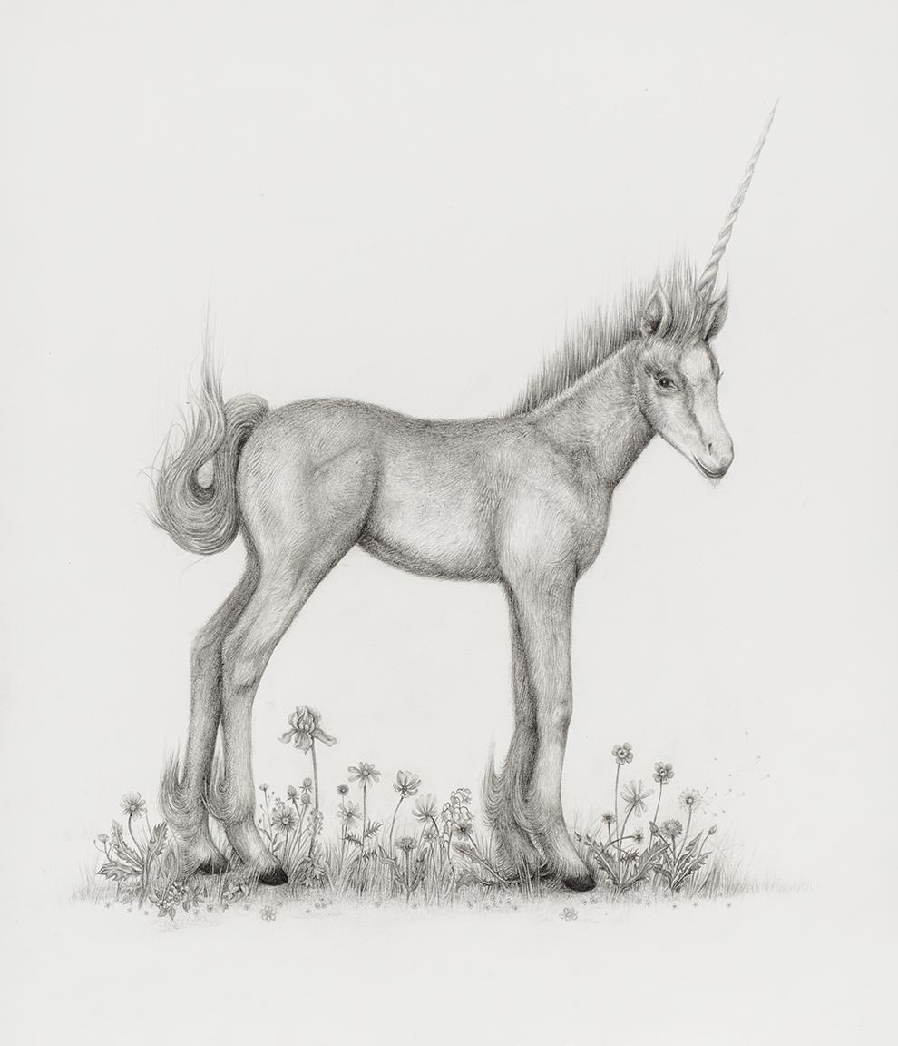 aurel_schmidt_ppow_unicorn_crop.jpg