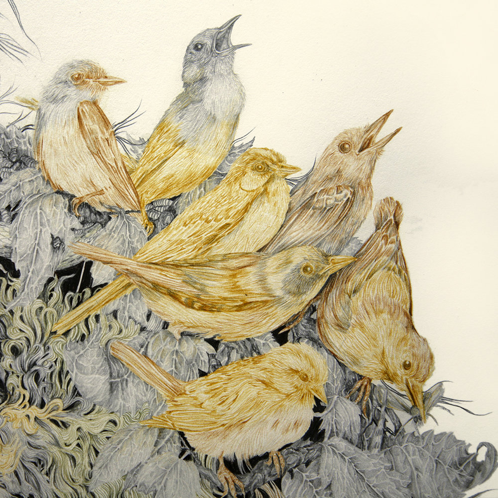 SuperNatural_Aurel_Schmidt_detail_birds.jpg