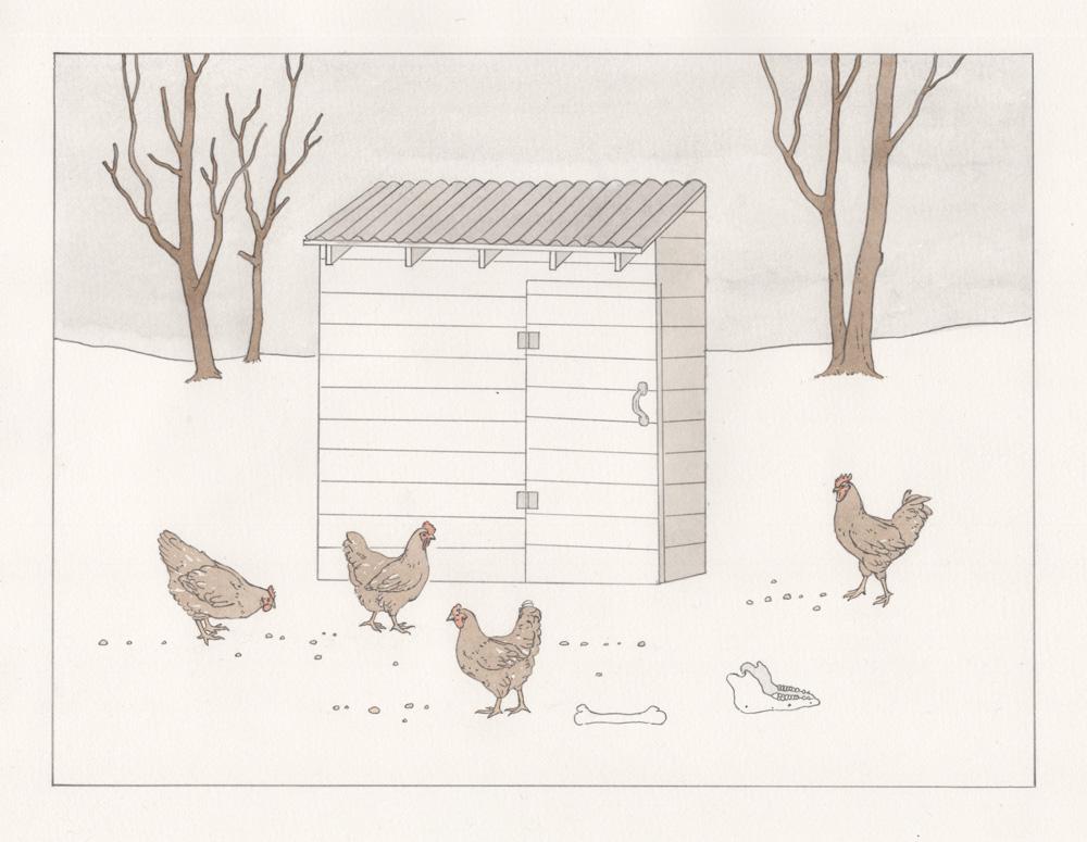 Nate_Antolik_Romeo_The-Chicken-House.jpg