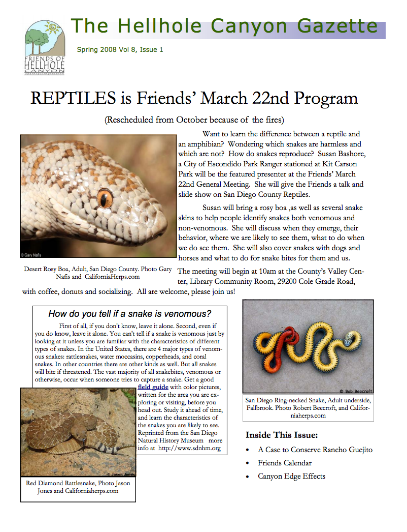 March 2008 Newsletter: Reptiles, Rancho Guejito
