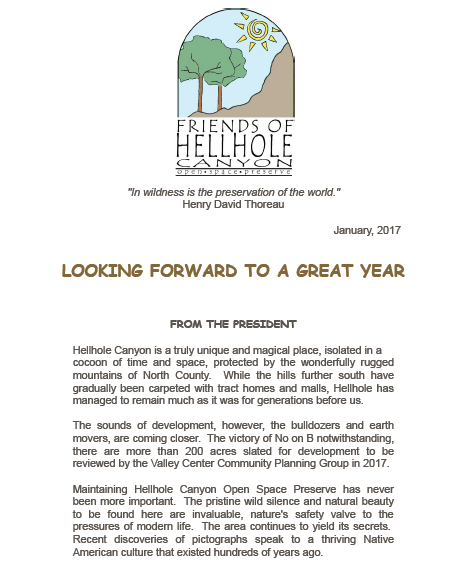 March 2017 Newsletter - Looking Forward