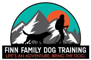 Denver Dog Training | Obedience and E-Collar Training | South Denver Based Dog Trainer
