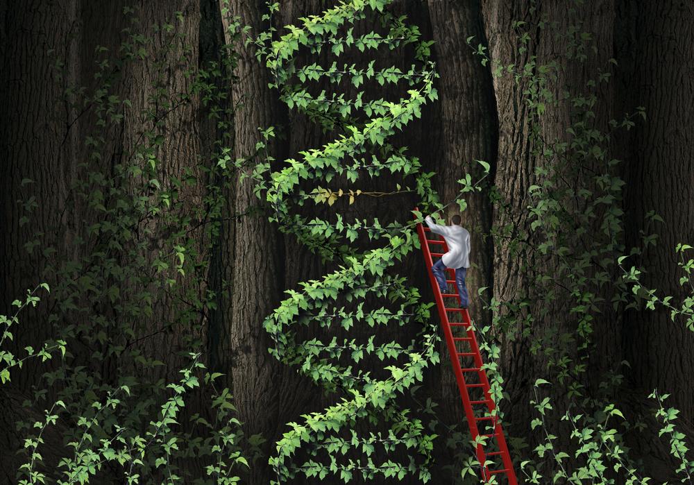 climbDNAtree