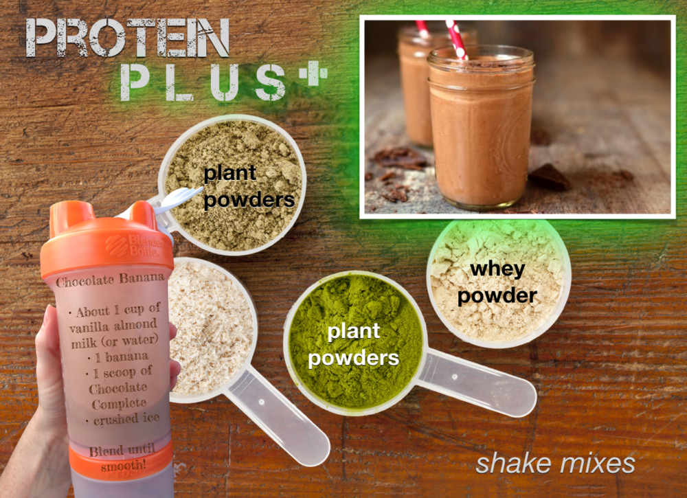 Plant powders contain: carbs, proteins, fats, fiber, vitamins, minerals, enzymes, anti-oxidants, phytonutrients.