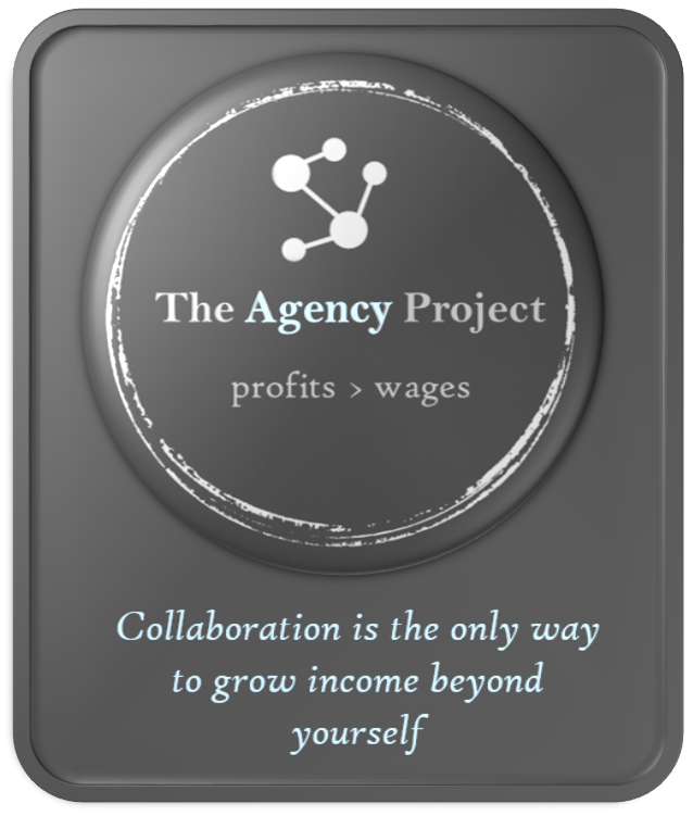 The Agency Project.png