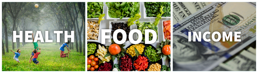 Health Food Income.PNG