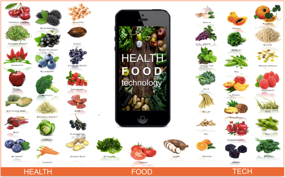 Health food tech phone.png