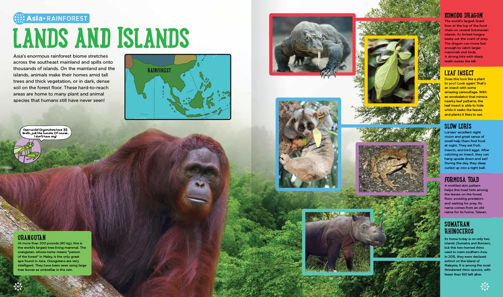 animal-atlas-spd2.png