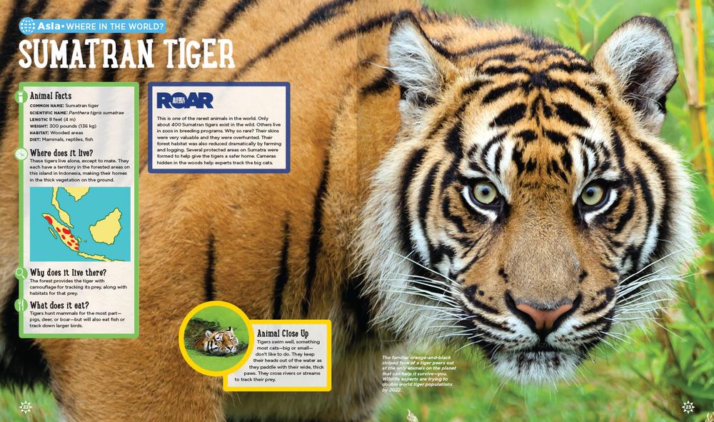 animal-atlas-spd6.png