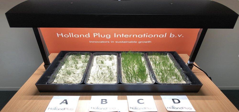 A: Sand, HollandPlug Flakes and grass B: Sand and grass C: Sand, HollandPlug Flakes, grass and Holland Active Water D: Sand, HollandPlug Flakes, Cress and Holland Active Water